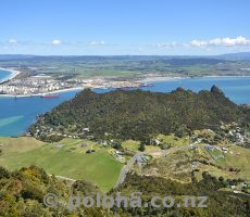 DAN2080_whangarei_harbour_mouth.jpg_600