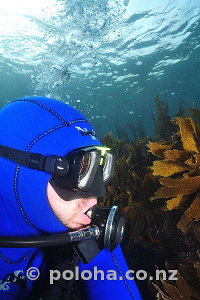 Diver breathing vintage regulator