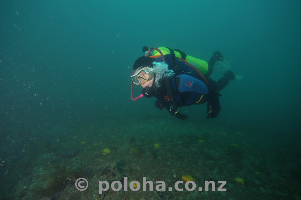 Konstantin underwater