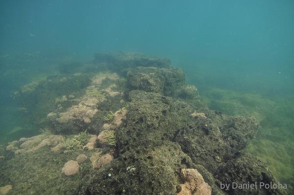 Underwater rock platform