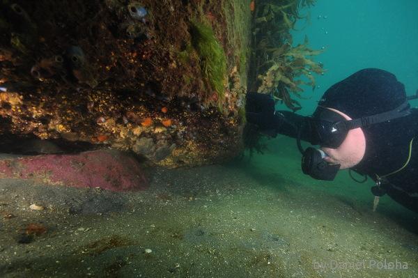 Diver at overhang