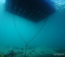 DAN_3691_bottom_under_floating_jetty.jpg_600